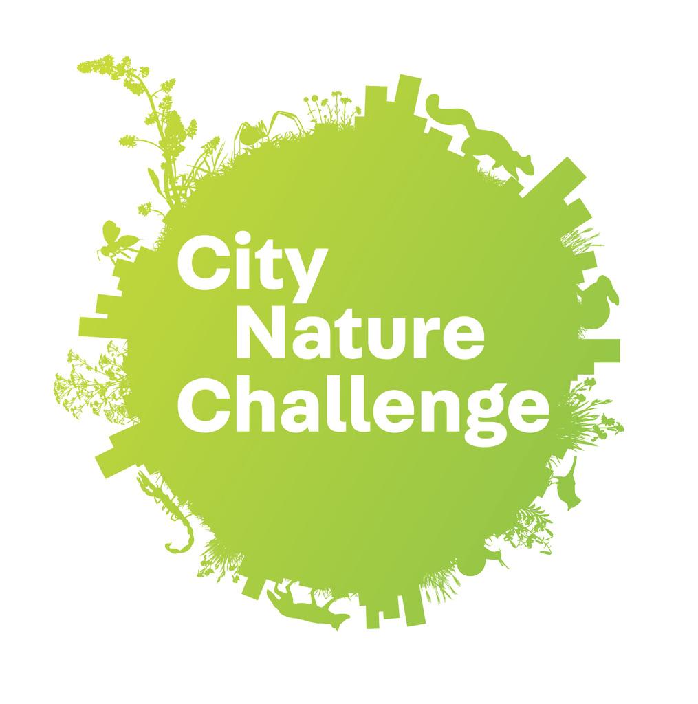 City Nature Challenge 2021: чемпионат мира по документации городского биоразнообразия